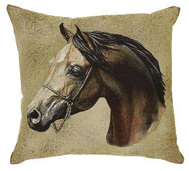 Arabian - Clearance Cushion