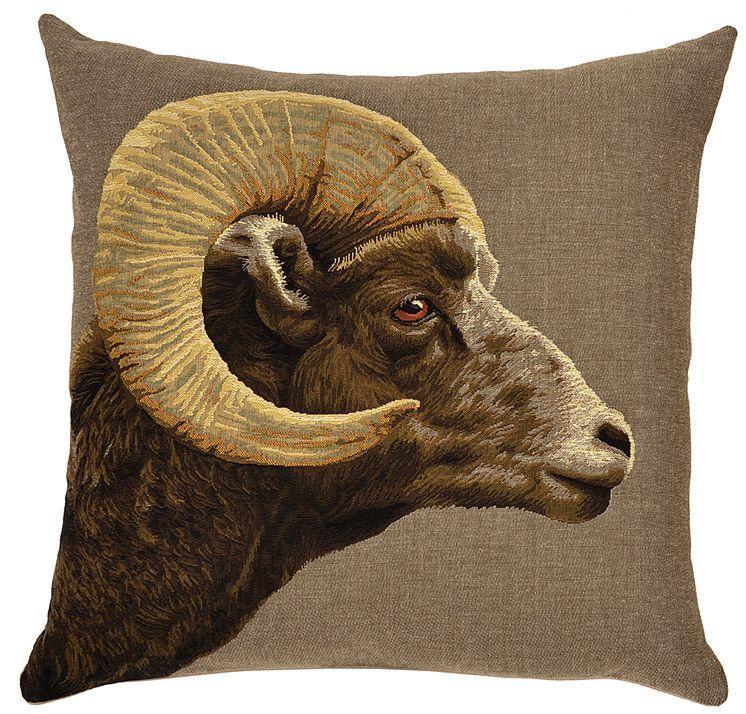 Ram, Argali Sheep - Brown Argali Ram