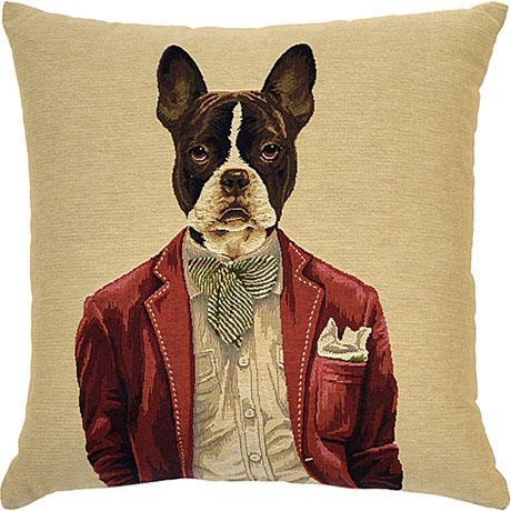 Dapper Dogs - Flynn