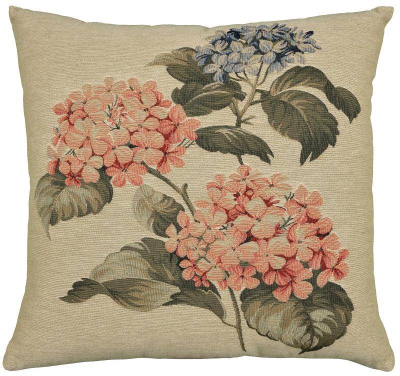 Hydrangea - Two Pink Hydrangeas