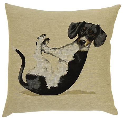 Yoga Dogs - Max