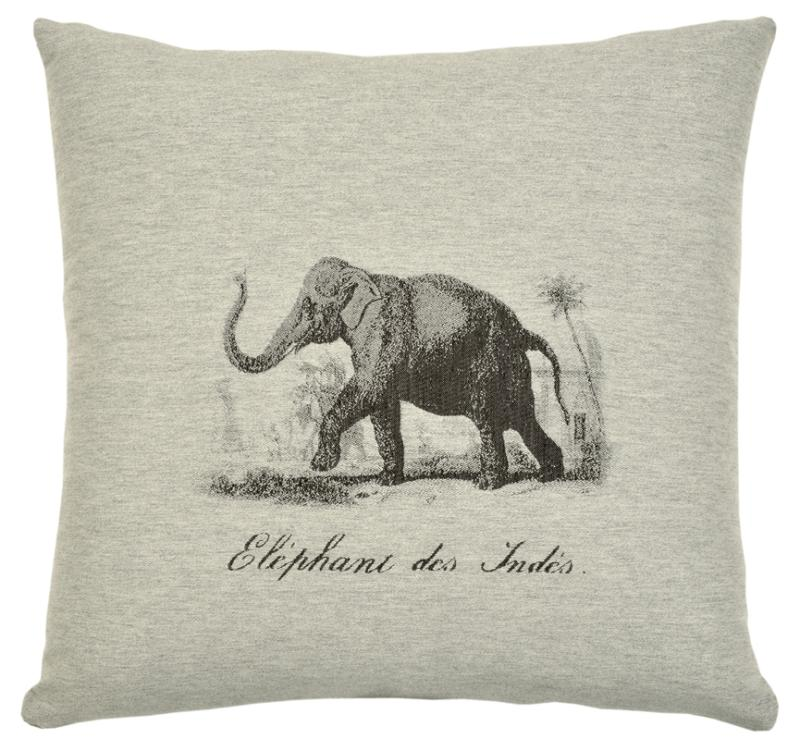 Safari - Elephant