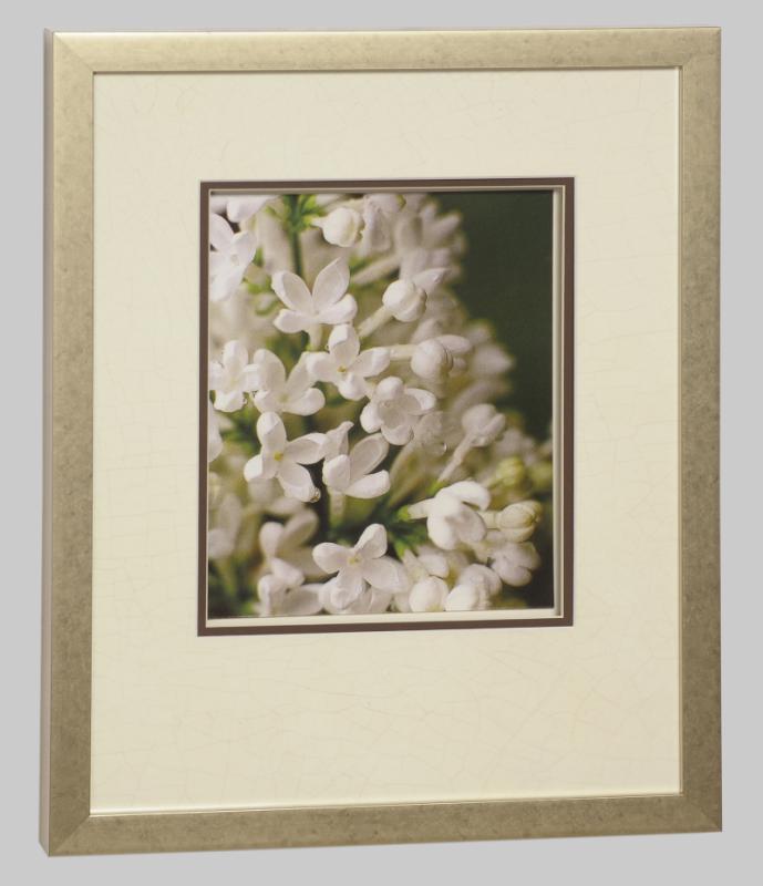 Technicolour Flowers - Lilac