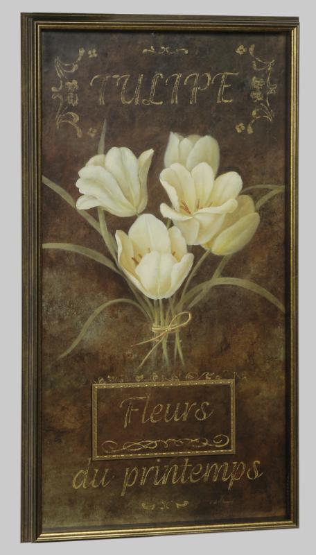 Tulip & Narcisse - Tulip