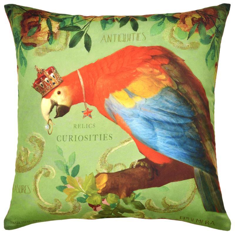 Curiosities - Parrot
