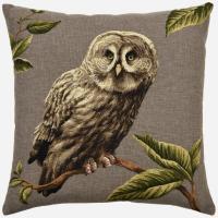 Night Birds - Great Grey Owl