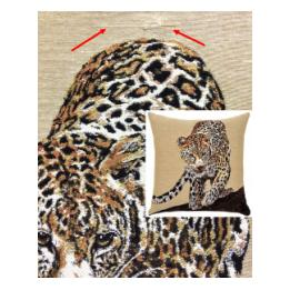 African - Leopard (S&S)