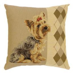 Argyle Dogs - Bella