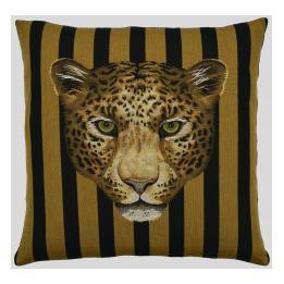 Big Cats - Leopard