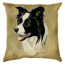 Portrait Dog-Border Collie