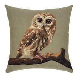 Forest Animals - Owl