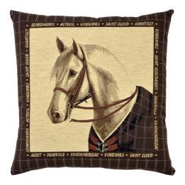 Horse Portraits - Grey Horse