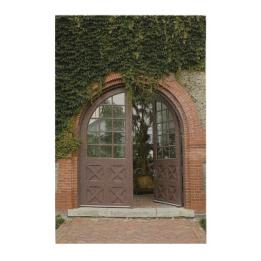 Ivy Doorway