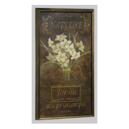 Tulip & Narcisse - Narcisse