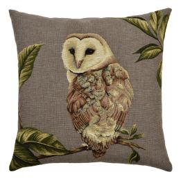 Night Birds - Barn Owl