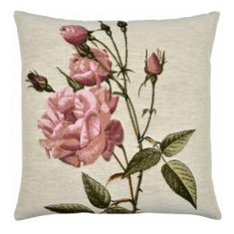 Pink Roses, Square Cushion