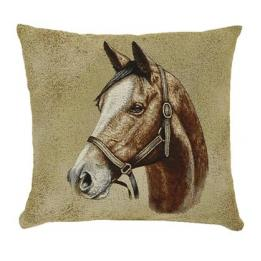 Portrait Horses - Thoroughbred