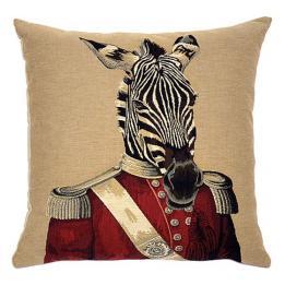 Zoo Animals - Zebra