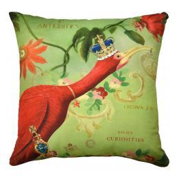 Curiosities - Ostrich
